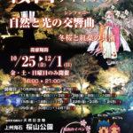 桜山ライトアップ チラシ20189